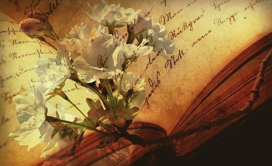 book-2808775__340